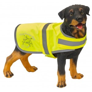 The Flying Ears - Hi-Vis Dog Vest